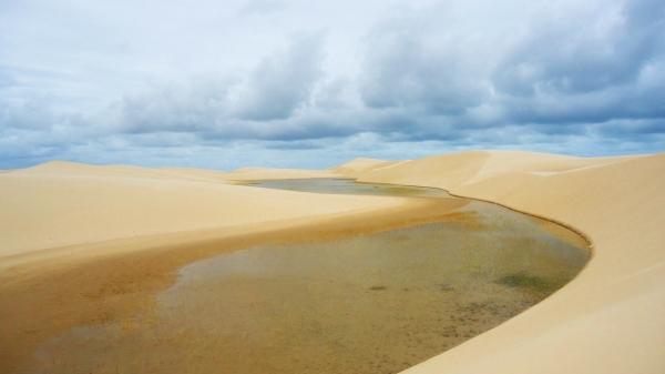 Duna alagada na Ilha do Caju