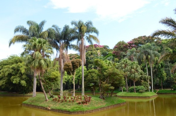 Parque Mariano Procópio